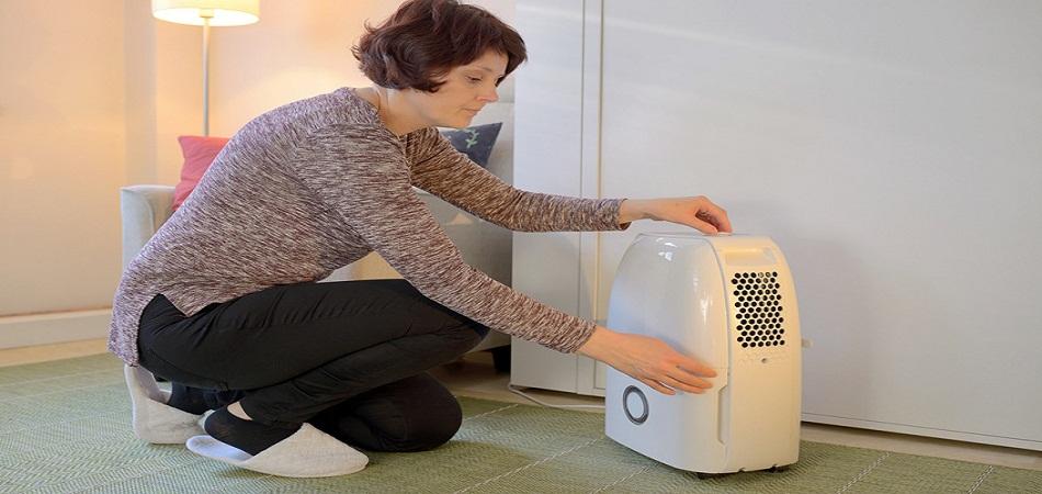 Faut-il choisir un déshumidificateur ou un purificateur d'air ?