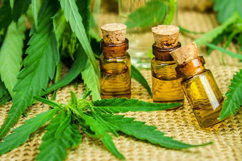 CBD et Arthrose, les bienfaits du cannabis cbd